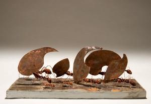 Ant-sculpture-Mackman