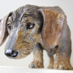 mini wire haired dachshund dog sculpture