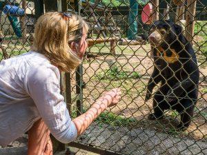 Animals Asia Visit