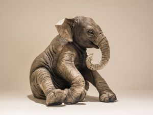 Baby Elephant Sculpture