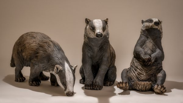 Badger Exhibition 2019