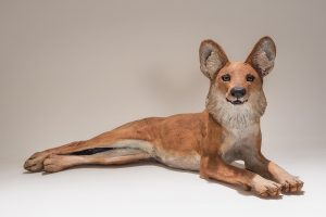 Dhole Sculpture