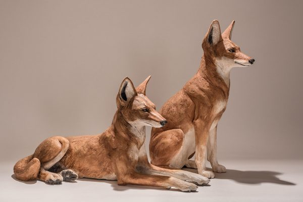 Ethiopian Wolf Sculptures