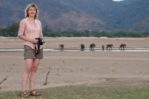 nick mackman elephants