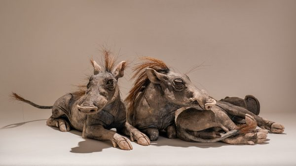 Warthog Sculpture Family