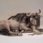 wildebeest sculpture