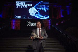Wildlife Photographer of the Year Awards