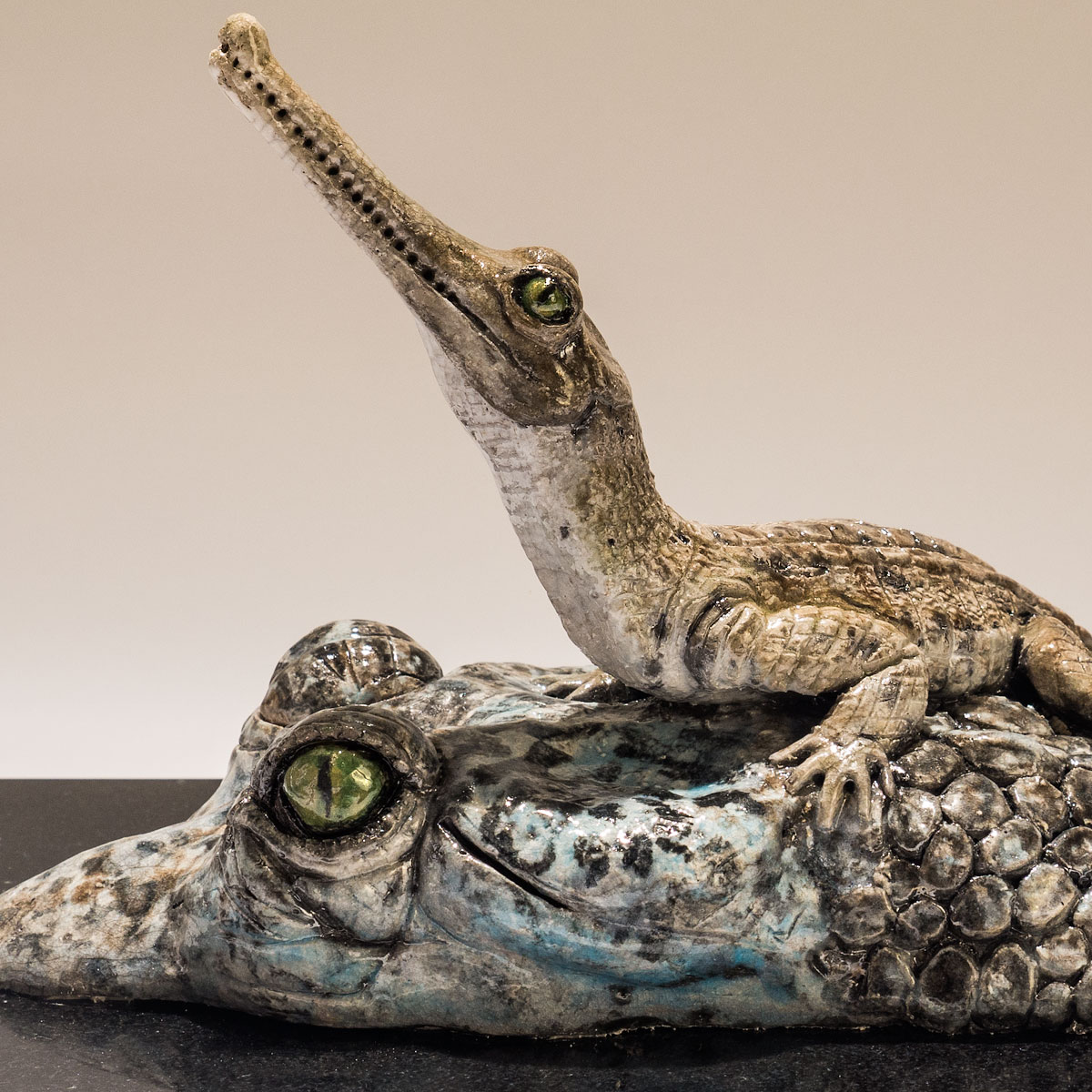 BBC Wildlife Photographer of the Year