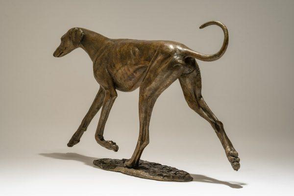 Azawakh Dog Bronze