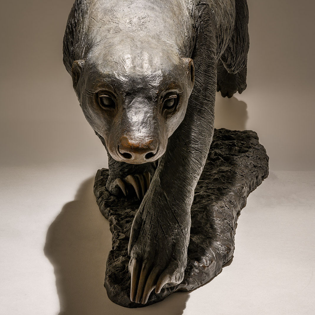 Honey Badger Sculpture Bronze £7995