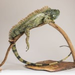 Iguana Sculpture by Nick Mackman